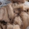 Vasket, kartet og uspundet uld – Baby/Royal alpakafibre – gråt